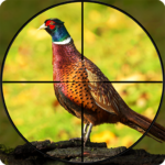 Pheasant Shooter: Crossbow Birds Hunting FPS Games APK MOD 1.1