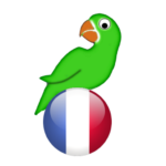 Learn French from scratch APK (Premium Cracked) 19.7